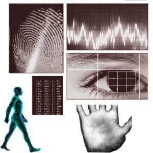 improvised personnel attendance using biometric finger scanner